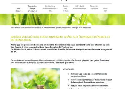 Green-Ko : création du site internet